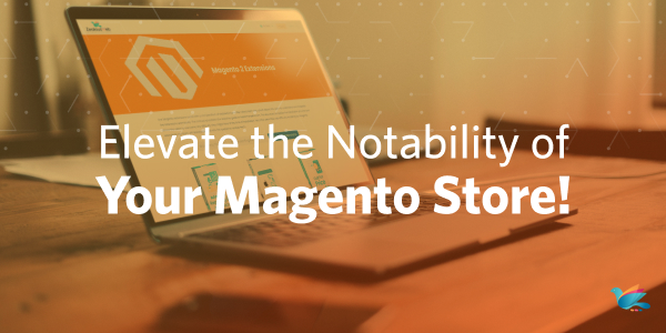 Elevate the Notability of Your Magento Store!